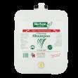 Ginseng-Shampoo
